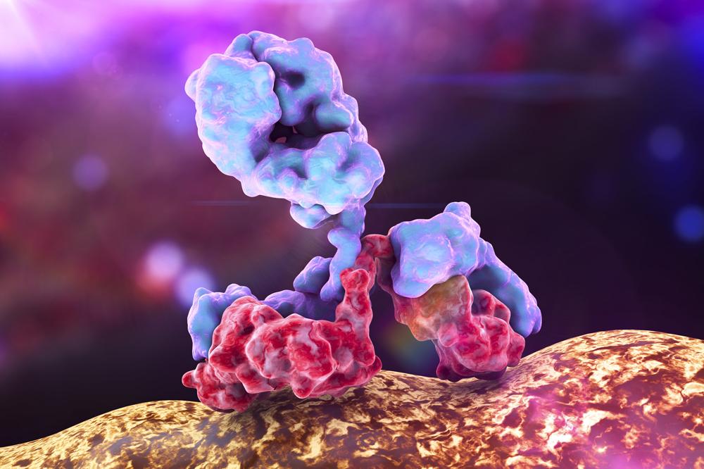 SARS/COV Spike Antibody